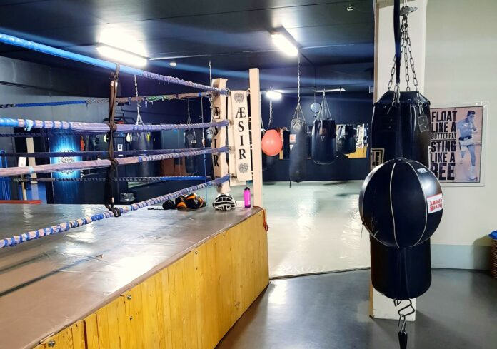 Bogatyr Boxing Team